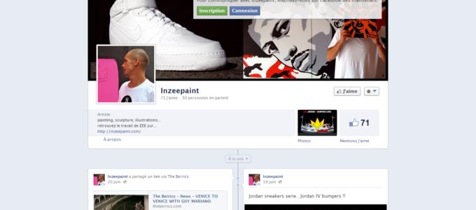 Facebook InZeePaint : accueil